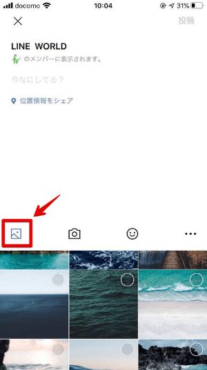 写真・動画